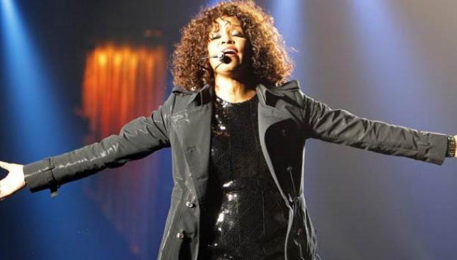El estilo de vida de Whitney iba más allá de las drogas, sostuvo Patricia Houston.